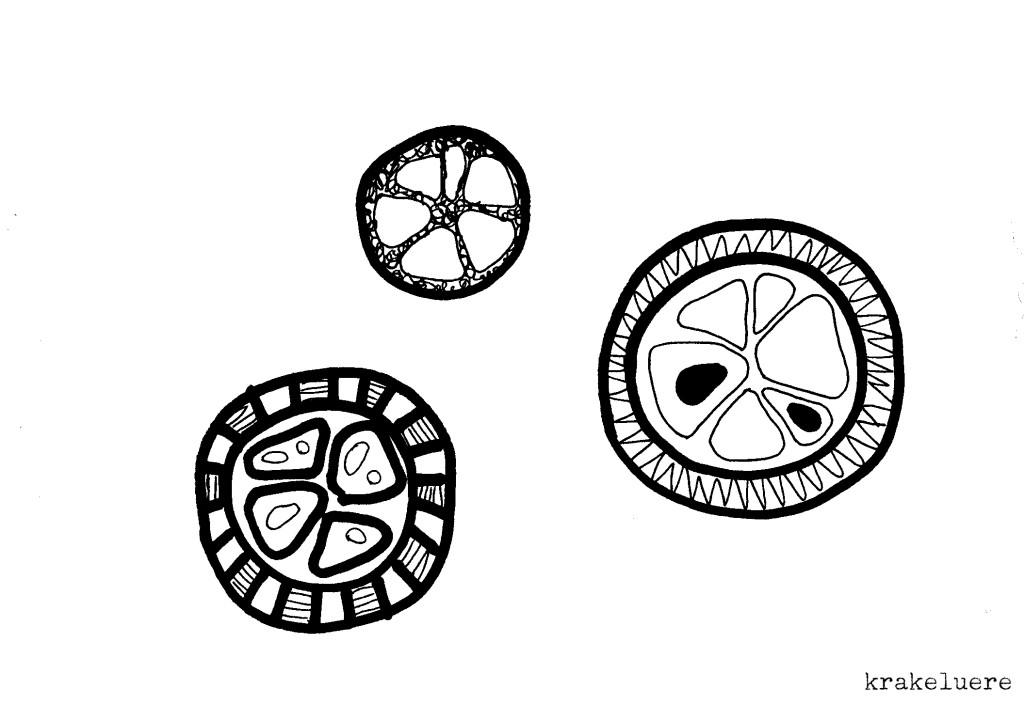 Kritzelei: Muster in s/w 4
